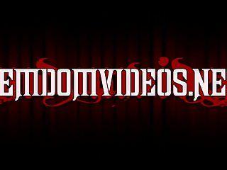 Fdv - rubbermaid - clip trailer