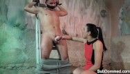 Dominated sub receives his rigid shaft wanked by dominatrix-bitch
